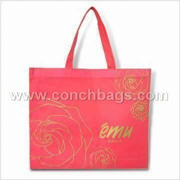 Nonwoven Shopping Bag with PE Bottom Base