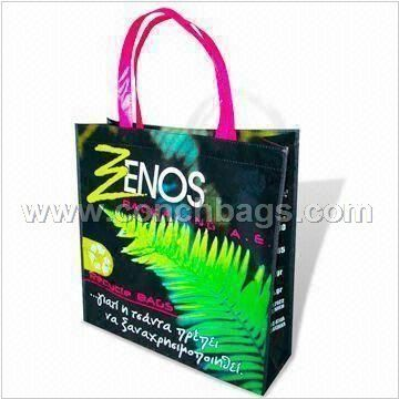 PP Non-woven Shopping Bag, Eco-friendly